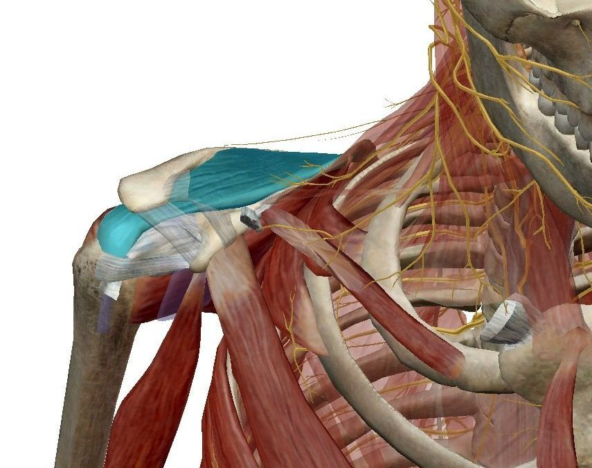 Frozen Shoulder: Very Treatable Using CTB (Part 1)