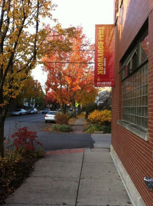 studio and sign fall